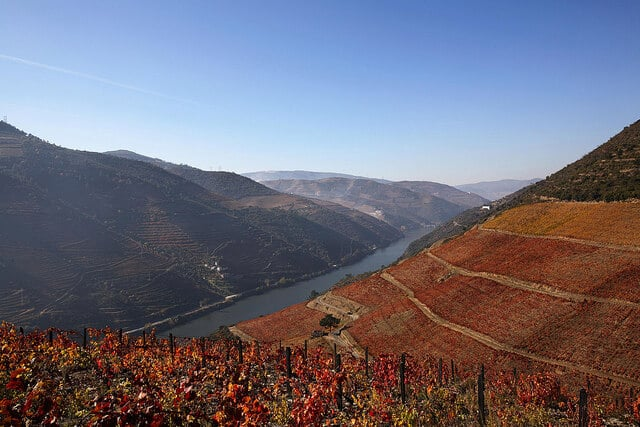 esporao vineyard douro