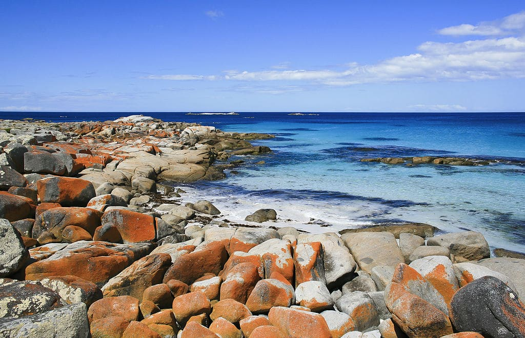 bay of fires taylors beach