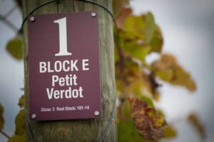 A Petit Verdot sign in a Virginia vineyard.