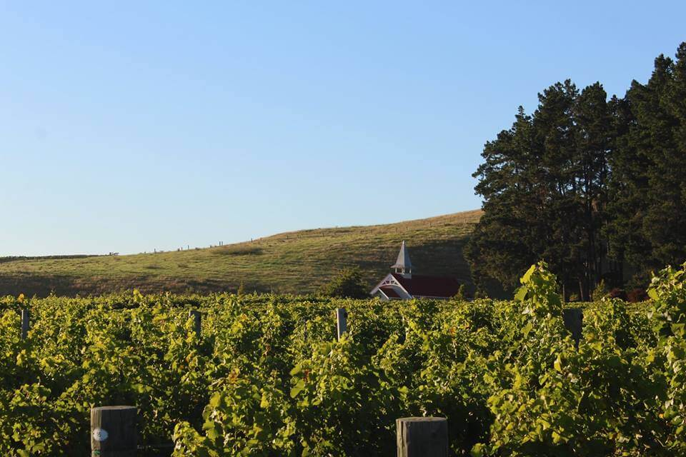 Clos Henri is a producer of exceptional New Zealand Sauvignon Blanc.