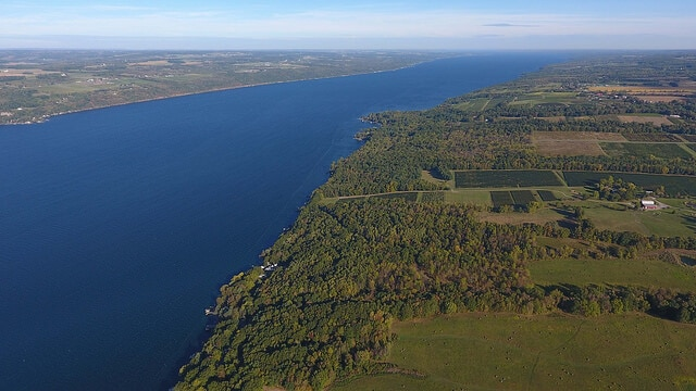 A vineyard on Seneca lake in the Finger Lakes wine region.