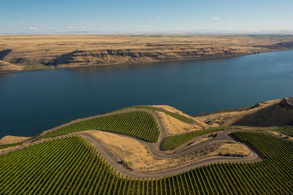 The Benches vineyard in Horse Heaven Hills is a source of grapes for many Washington red wine blends.