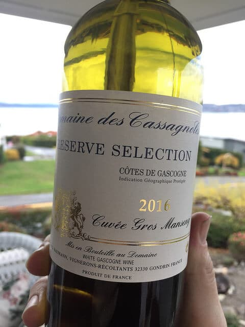 Welcome to the best bargain white wine in the world: Domaine des Cassagnoles Gros Manseng.