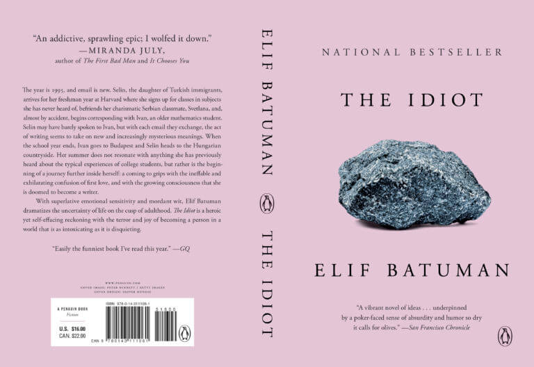 The Idiot by Elif Batuman is a fantastic novel.