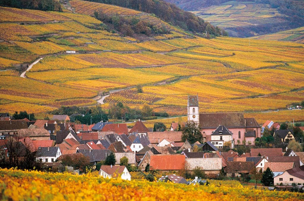 Alsace, where Lucien Albrecht wines are made.